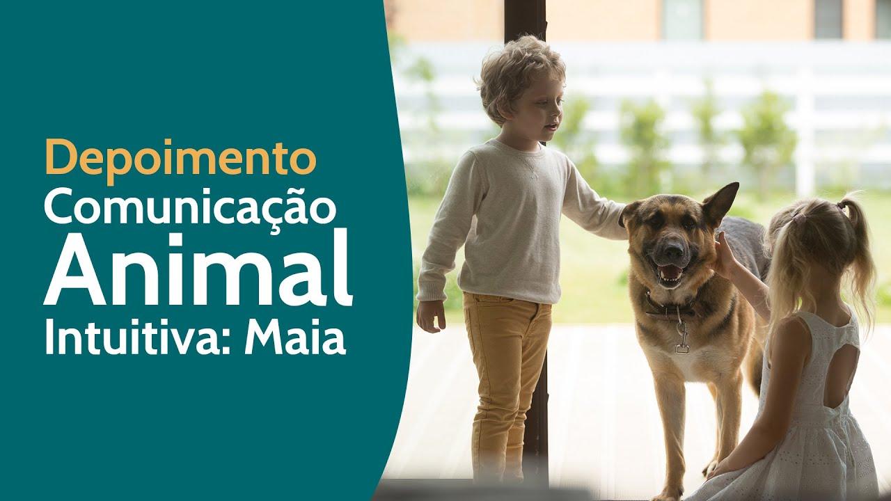 Depoimento - Comunicação Animal Intuitiva: Maia - tristeza, confiança e harmonia