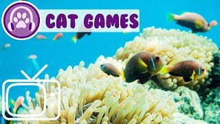 Cat Games, Games to keep your cats entertained!