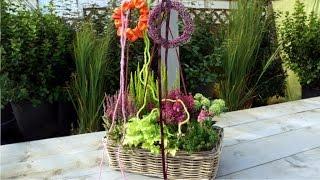 Wie bepflanzt man einen Herbst-Kasten?