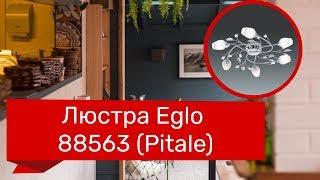 Люстра EGLO 88563 (EGLO 95162 PITALE) обзор
