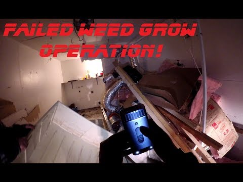 Searching An Abandoned Duplex House In Sacramento, California FAILED WEED GROW OPERATION
