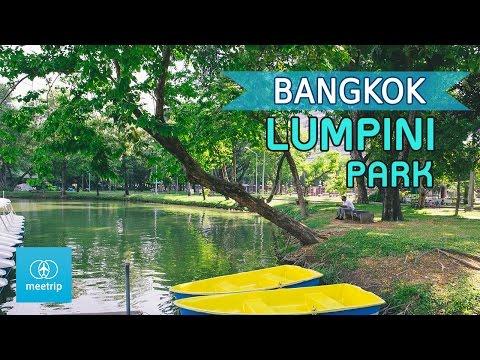 Bangkok Travel Guide - Bangkok Park - Lumphini Park   Meetrip
