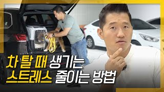 How to reduce your dog's car stress (concerns about Chuseok & New Year holidays)