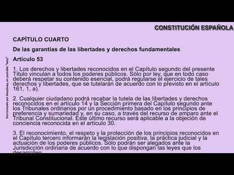 constitucion-espaÑola-solo-artículos-y-enunciados-con-audio-y-texto-sincronizado-keny