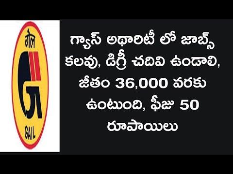Gas authority of India limited jobs telugu || gas authority jobs telugu job news