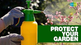 Protect your garden   Gardening tips   Nani maa ke nuskhe   Saregama Podcast