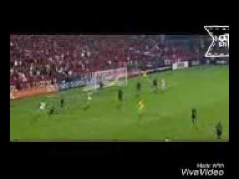 Melhores momentos de Flamengo X Ponte Preta