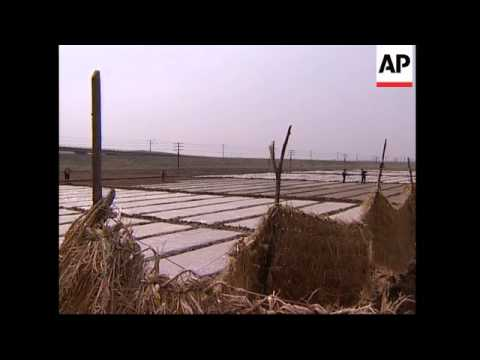 Report on North Korea planting season