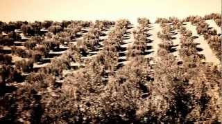 """INNERMOVE - """"Oil"""" (videoclip - oficial)"""