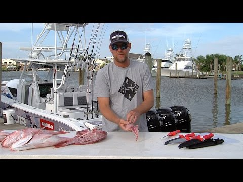 Captain Steve Rodgers Grilled Fried Red Snapper Recipes