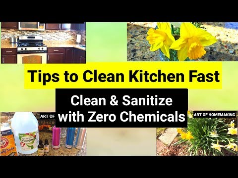 Indian (NRI) Kitchen Cleaning Routine for GERMS Free Kitchen | Tips to Clean Kitchen Fast | SAHM