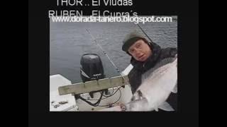 pescadoradatanero 26 de abril pesca dorada peche dorade  fishing orata.wmv