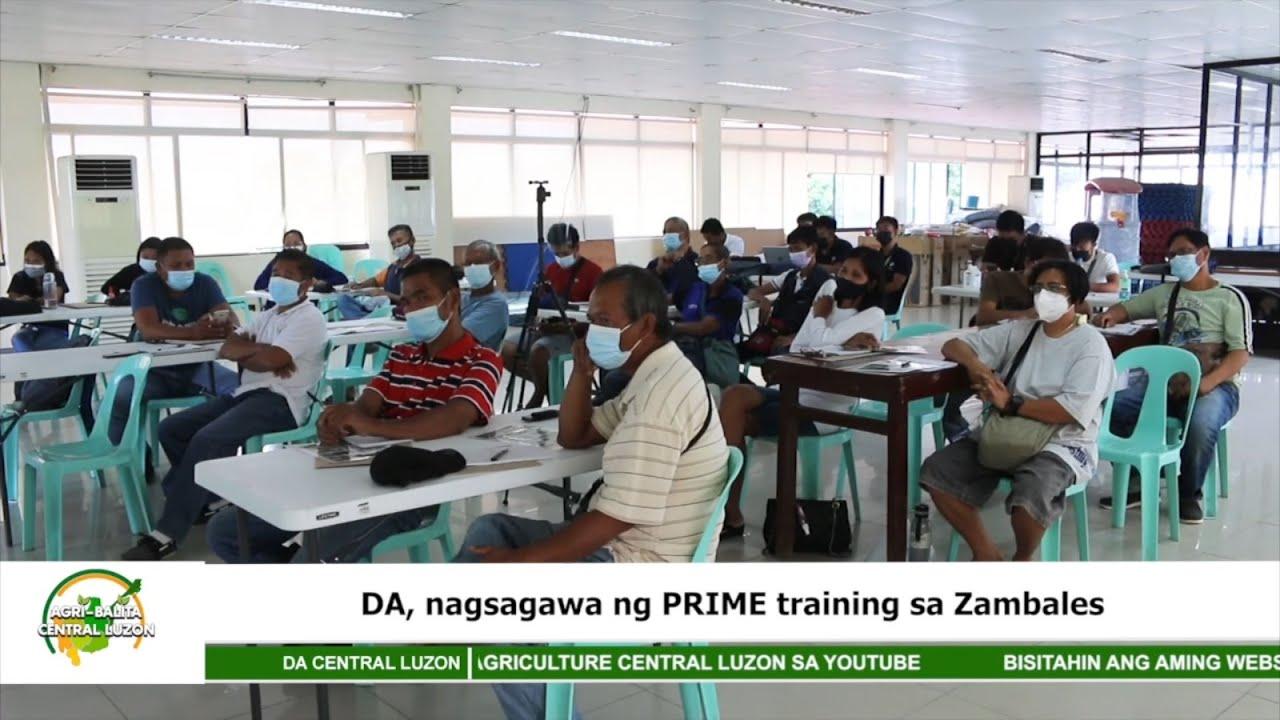 Department of Agriculture, nagsagawa ng PRIME training sa Zambales | Agri-Balita Central Luzon