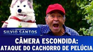 Câmera Escondida (02/10/16) - Ataque do cachorro de pelúcia