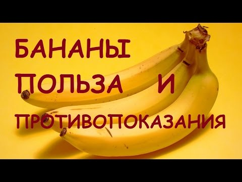 Польза и вред бананов, полезные свойства и