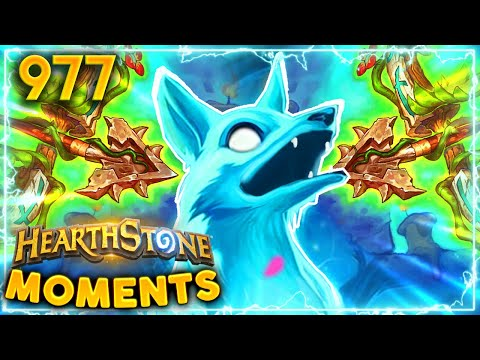 These Cards Are ABSOLUTELY USELESS | Hearthstone Daily Moments Ep.977