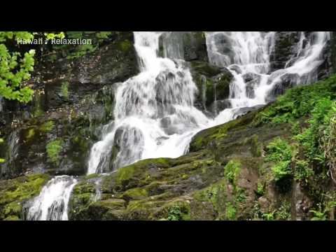 Relaxation Zen Flûte Chinoise Bambou Et Eau ☯ Puissant Déstressant, Sommeil Profond, Méditation, Spa