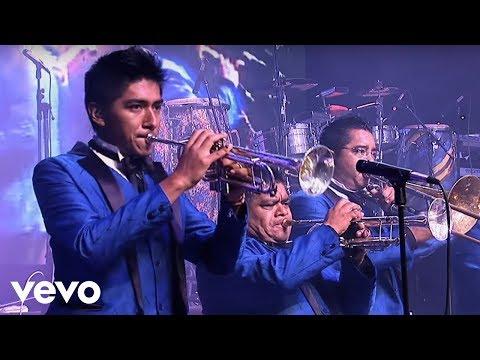 los-Ángeles-azules---amigos-nada-más-(live)