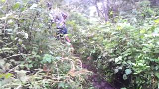 Adventure Trekking Monsoon Tourism Wayanad Kerala