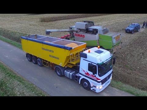 Big Moisson De Maïs 2017 | Camion & 3 Moissonneuses Claas