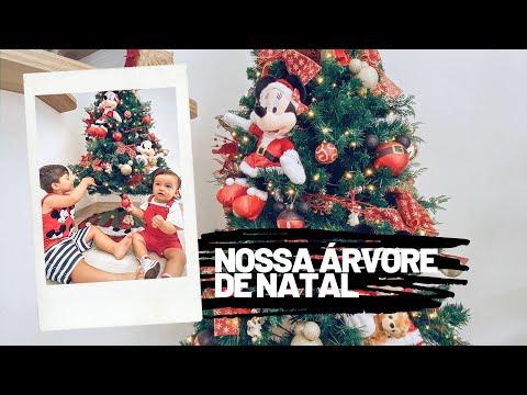 MONTANDO A ÁRVORE DE NATAL | Tali Ramos