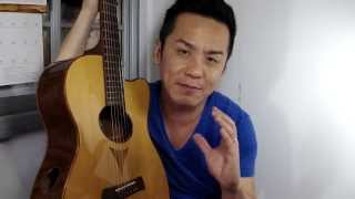 Martin OMC Artinger 1 Special Edition Guitar Review in Singapore