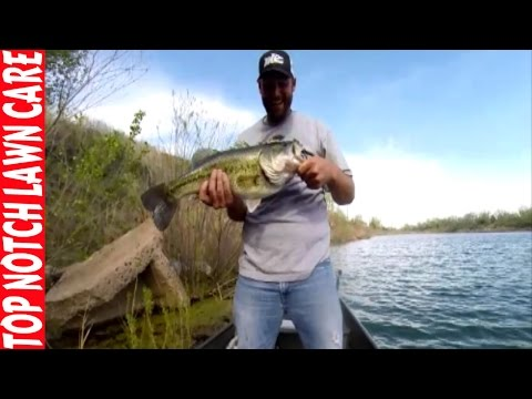 Lunker Bass Caught On Tape, Texas Rig Senko Worm, Fishing Vlog #2