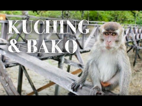 Kuching & Bako | MALAYSIA, Sarawak, Borneo | Let's Travel #10
