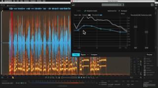 iZotope RX 6 101: Musician's Toolbox - 6. Voice De-noise Module Adaptive