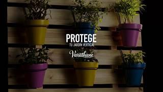 Protegé tu jardín vertical con Varathane