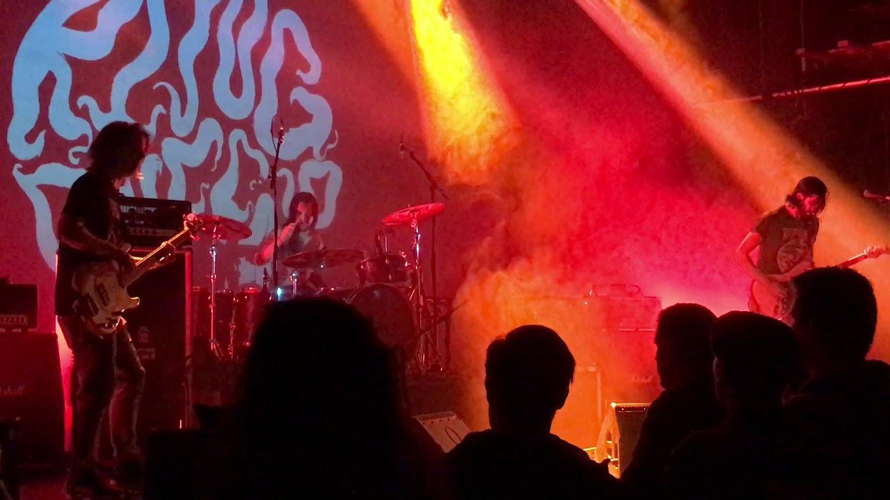 Live Show Hamburg