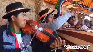 "Costumbre: ""Obligado"" de Carhuanca (O Toril)"