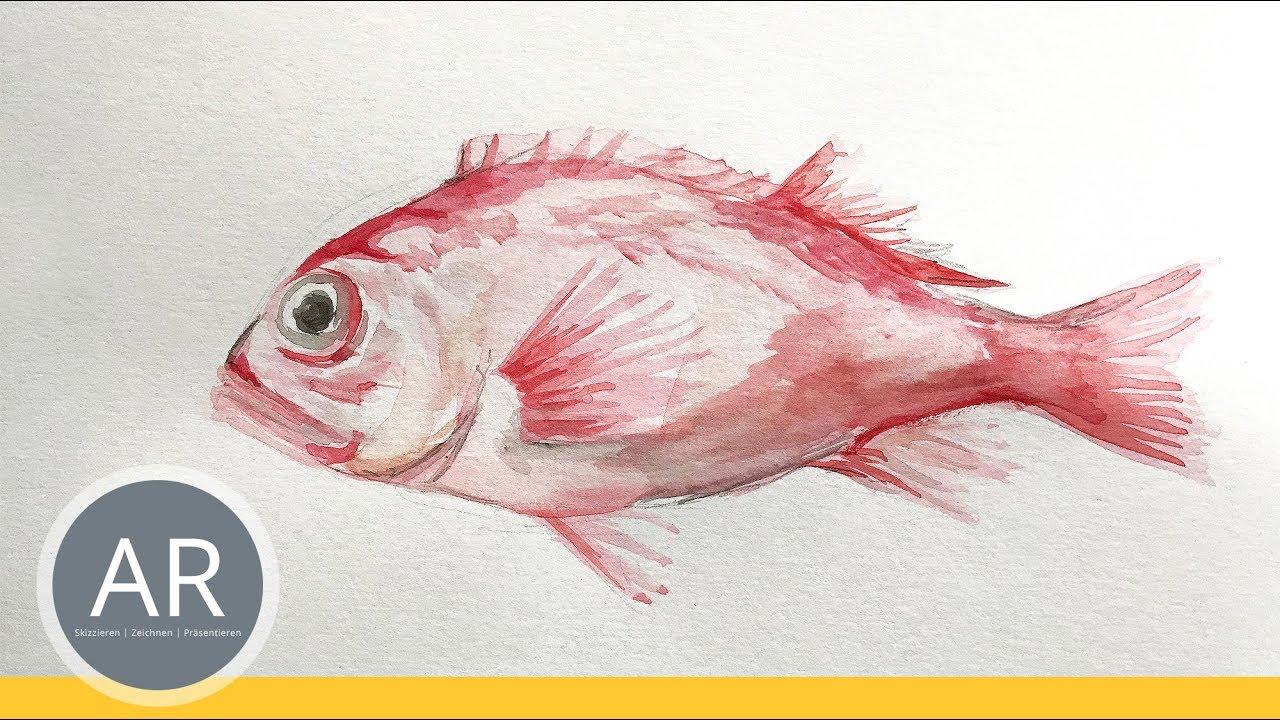 Tiere Mit Aquarell Zeichnen Zeichenkurse Beispiel Mappenkurs Kunst
