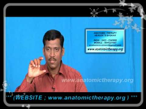 anatomic therapy part-1 - 2012 animation video 2/5