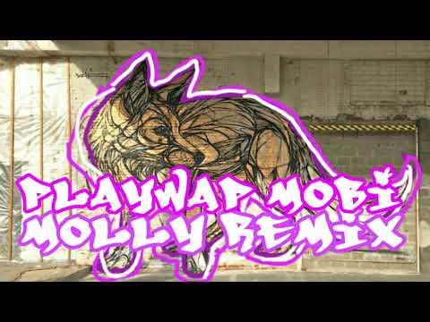 Lil Pump - Molly (PlayWap Mobi Remix)