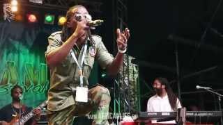 Loyal Flames @ Reggae Jam 2014, 01.-03.08. Bersenbrück