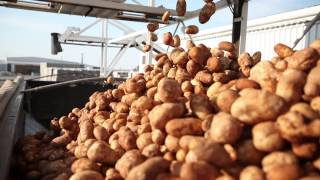 2013 Platinum Laureate - Washington State Potato Commission