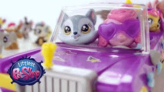 Littlest Pet Shop Toys - Pet Limo