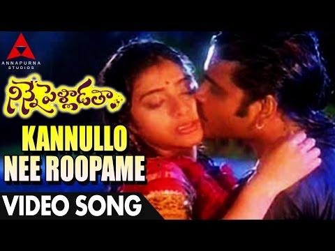 Kannullo Nee Roopame Video Song - Ninne Pelladatha Movie - Nagarjuna,Tabu