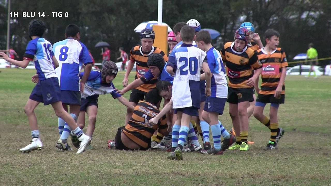 Blue mountains rugby union