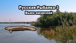 Російська рибалка 3. В'юн амурський. Рідкості