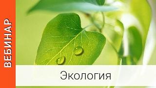 видео Основные экологические проблемы - Особенности экологии озера Байкал
