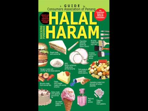 Halal Haram Youtube