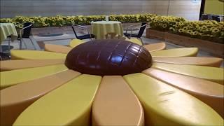 """【日本一入館料が高い】大塚国際美術館 ゴッホ 7つのひまわり残念ながら雰囲気だけお楽しみ下さい、""""Phantom"""" Sunflower Vincent van Gogh"""