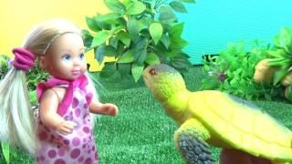 Алиса и черепашка.  Две Серии без перерыва. Бабушкины Сказки