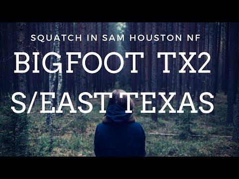 🙉BigFoot SouthEast Texas 2🙉 Daylight Sighting Near Sam Houston National Forest