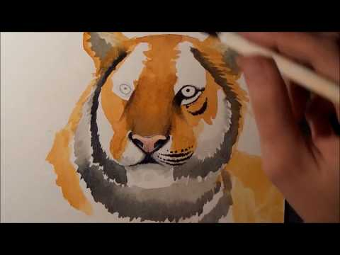 Tiger zeichnen – Time lapse