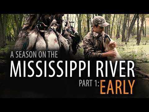 6/60: Part 1: EARLY | A Duck Hunting Season On The Upper Mississippi River