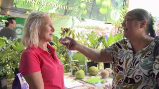 Breadfruit Interview Kauai Farm Fair