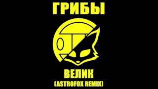 Грибы Велик AstroFox Remix